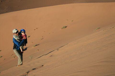 De dunes et palmeraie  du Draa